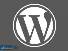 Apa Kelebihan dan Kekurangan dari WordPress org